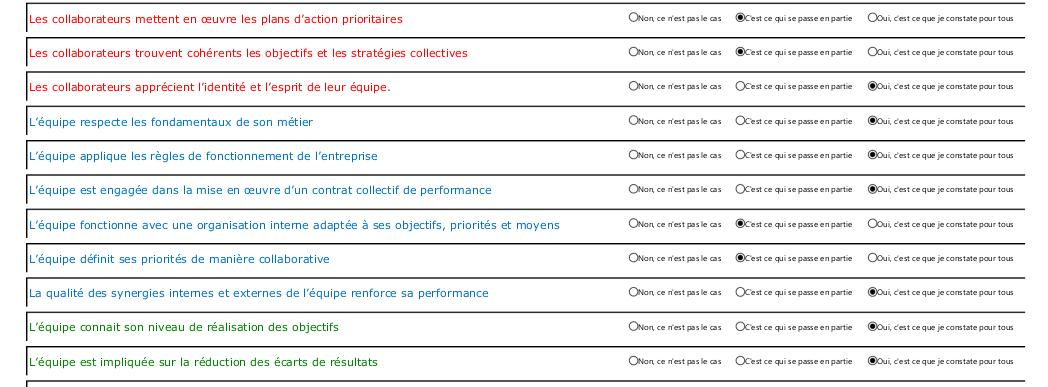 Extrait questionnaire auto évaluation